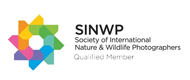 Society of International Nature and Wildlife Photographers